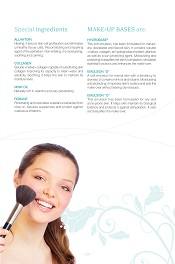 Special ingredients Make-up bases